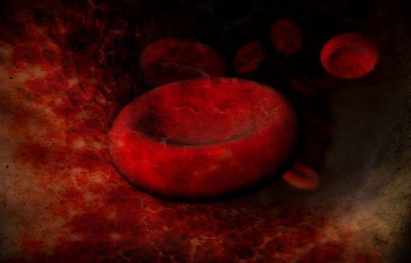 2.) Every 60 seconds, your red blood cells do a complete circuit of your body.