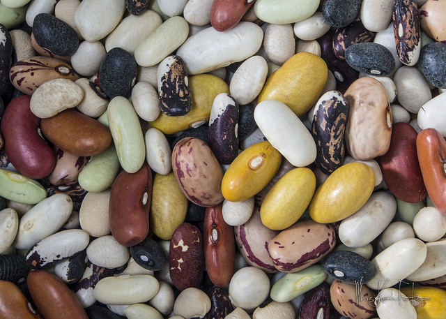 Beans, nuts, and legumes
