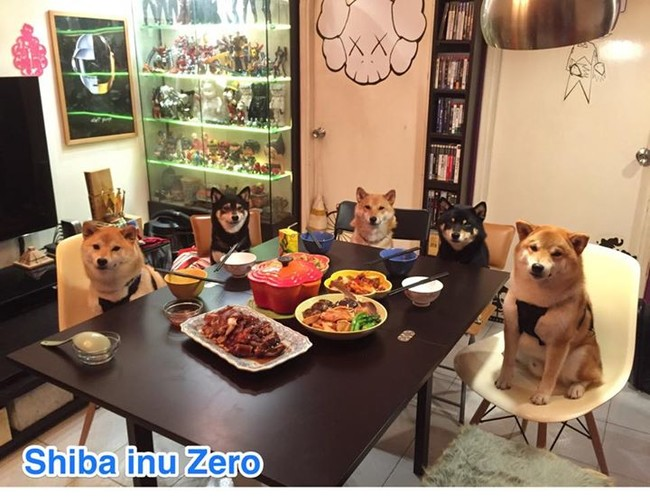 They love posing with food as much as Instagram users love posting theirs!