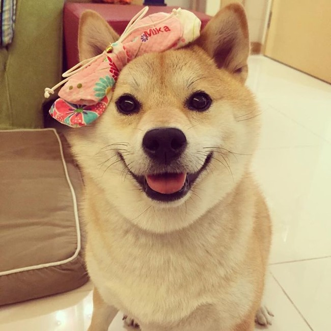 This smile tells you just how proud she is of that bow.