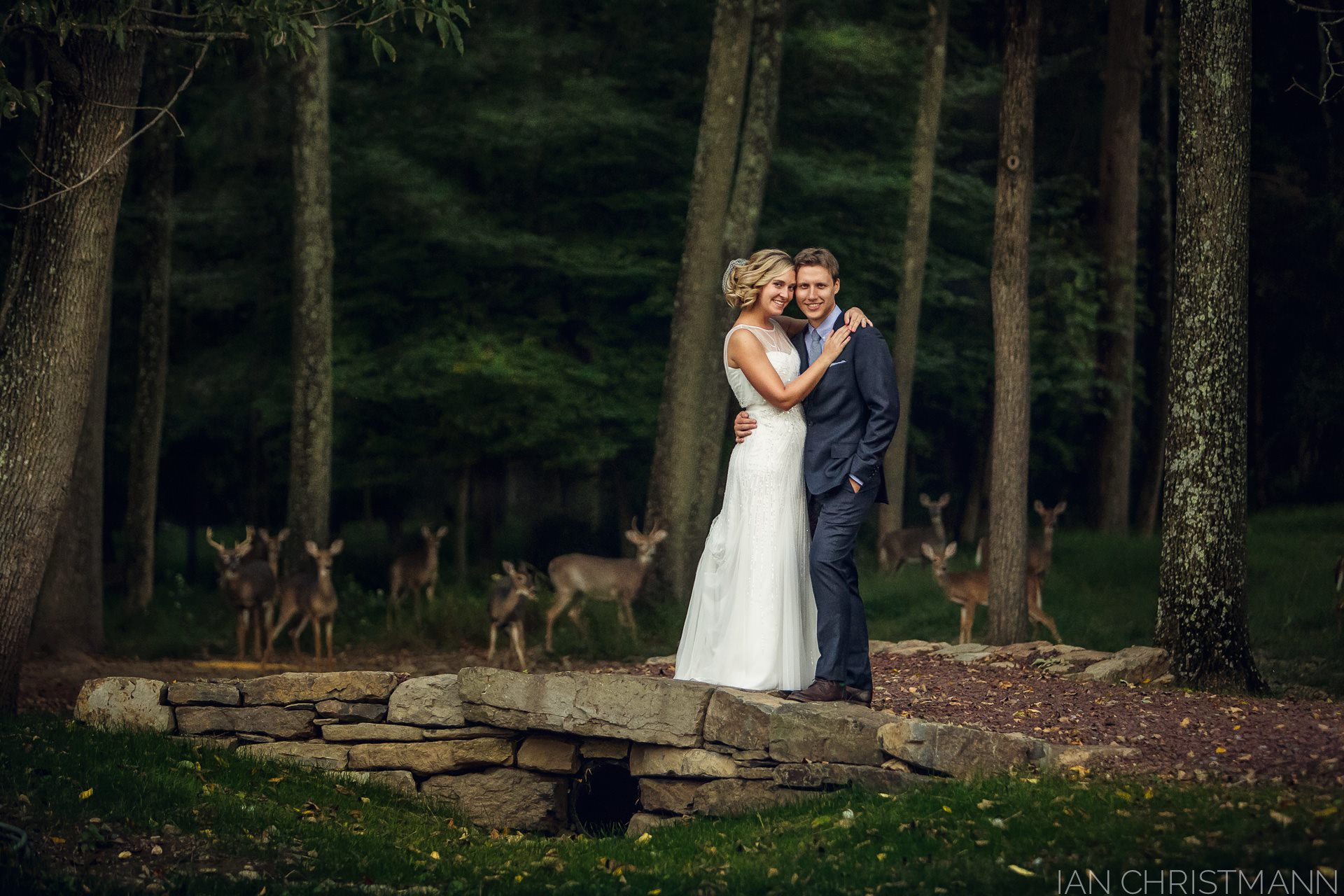 deer-wedding-crashers1