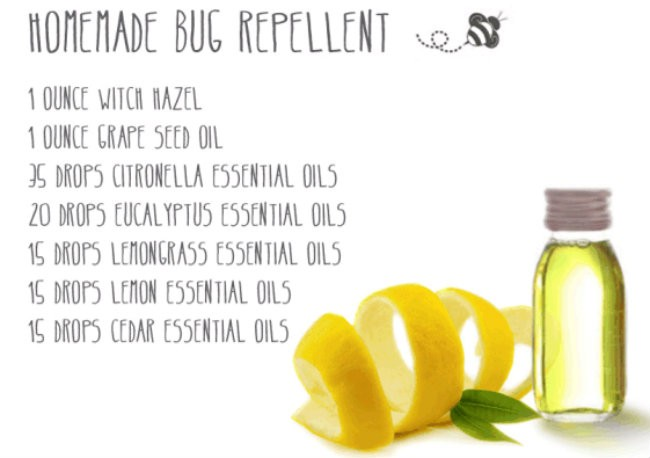 Organic Bug Repellent